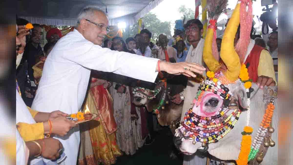 Chhattisgarh, Chief Minister, Bhupesh Baghel, Pora Teeja Tihar,