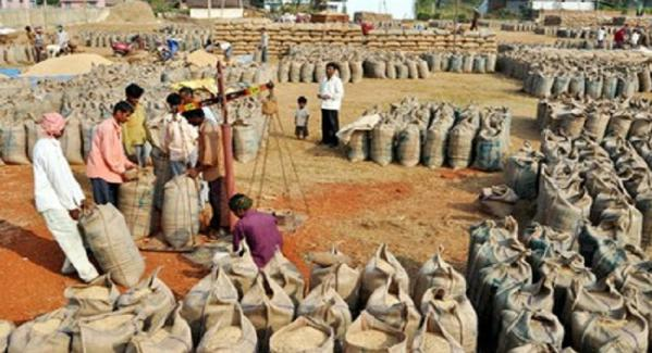 Paddy purchase in Chhattisgarh from 1st December,