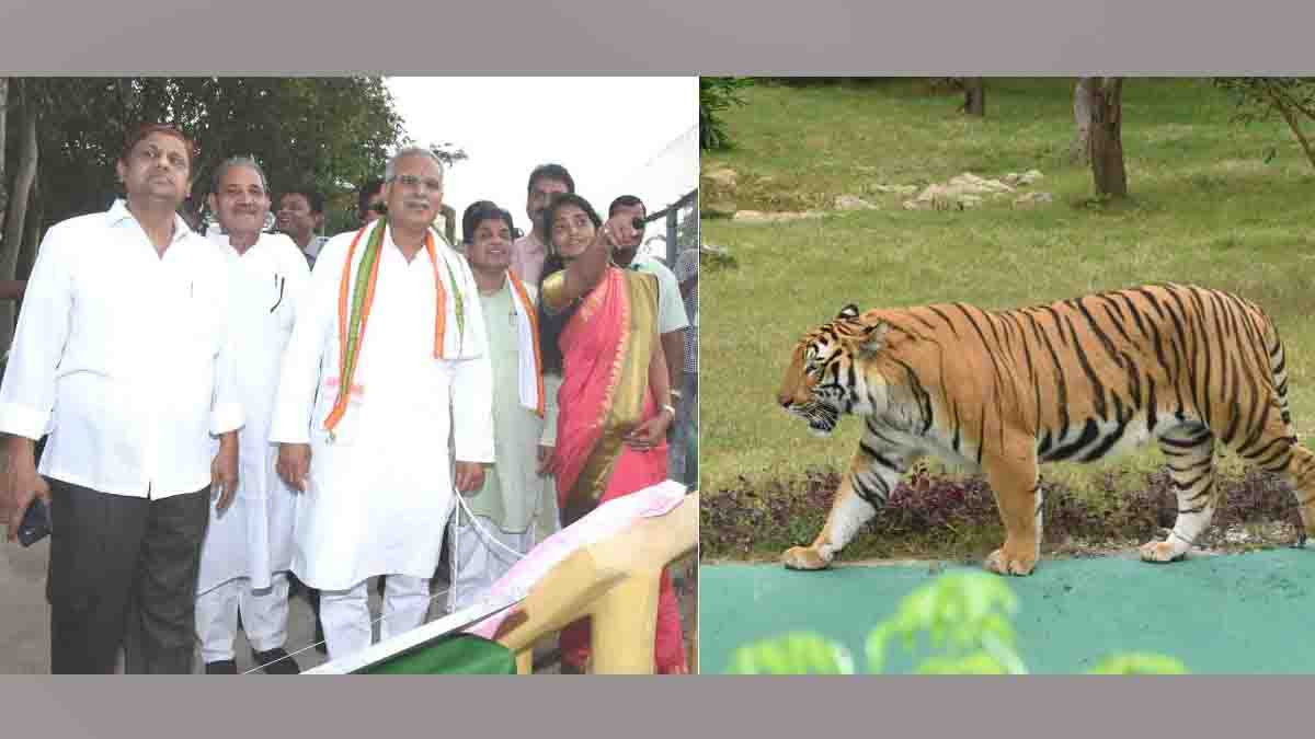 Jungle safari, Proposal to increase ticket rate, Forest minister mohammad Akbar rejected,
