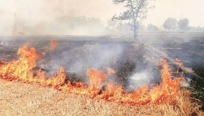 Chhattisgarh, 57 farmers who burn stubble, 2 .25 lakh rupees, Penalty recovery,