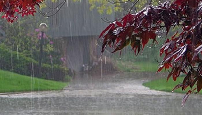 छत्तीसगढ़ में अब तक 1134.7 मि.मी. औसत वर्षा दर्ज