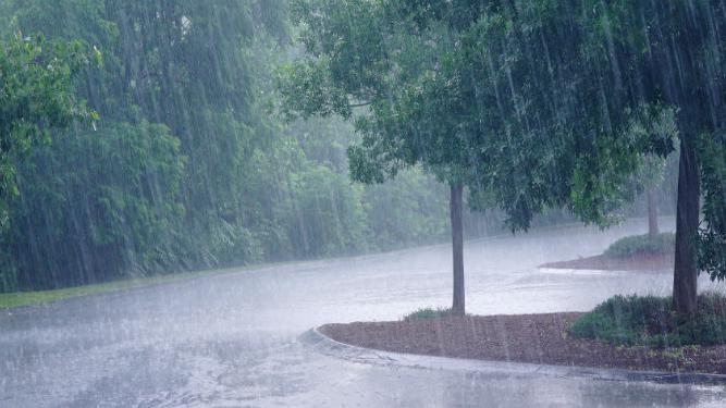 छत्तीसगढ़ में अब तक 964 मि.मी. औसत वर्षा दर्ज