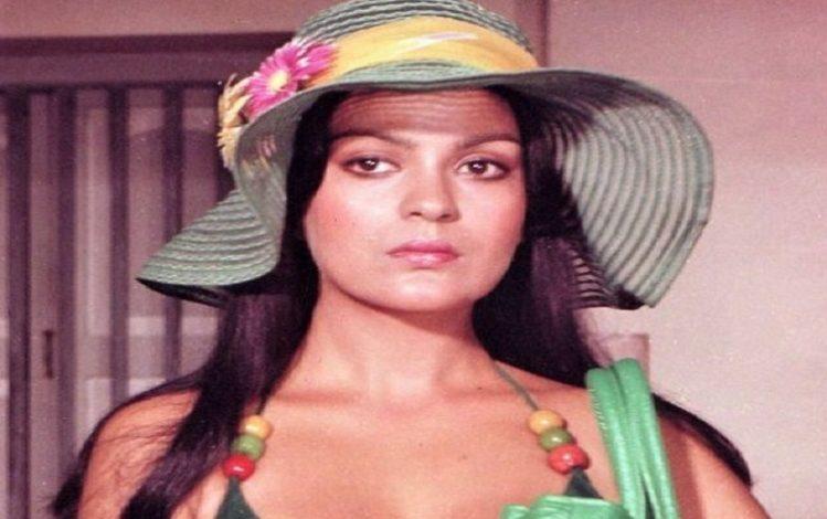 अब इस फिल्म में नजर आएंगी बॉलीवुड अभिनेत्री Zeenat Aman