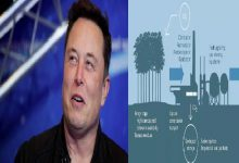 Twitter Viral: As soon as Elon Musk announced the award of 730 crores on Twitter, there was such a stir on social media, why did he announce the award of $ 100 million