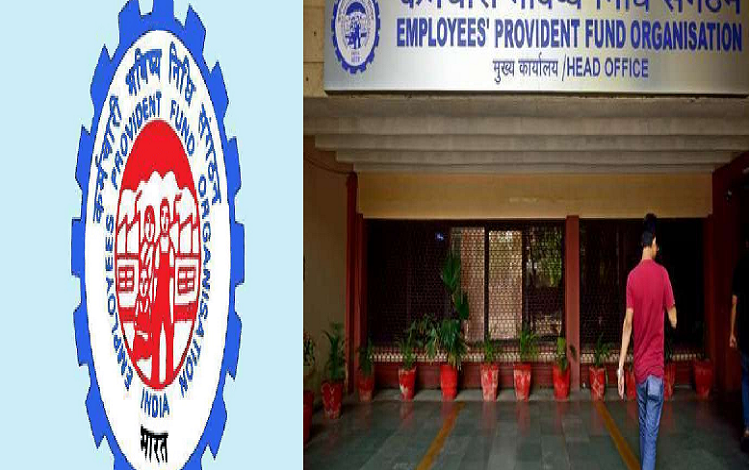 Provident Fund: EPFO gives relief to 6 crore employees, there is no change in the interest rates on PF, interest will be given at the rate of 8.5 percent only.