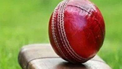 Birthday Special: इस क्रिकेटर ने दसवें विकेट के लिए की थी 307 रन की साझेदारी, बनाए थे 240 रन