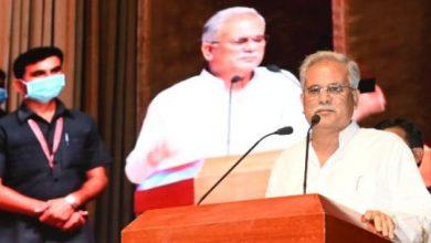 वनौषधियों से जुड़े उद्योगों की स्थापना के लिए हर मदद करेगी राज्य सरकार- भूपेश